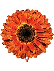 "24"" Orange Flower Autumn Balloon"